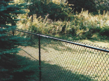 Chain Link Alpine Fencing Ny